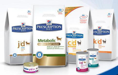 Dog food diet: the features of choice. Effects on the animal's body in certain diseases